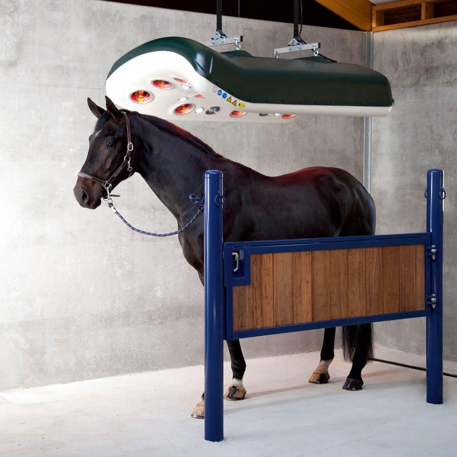 solarium voor paarden